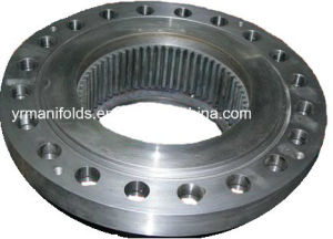 Flange for Manifolds, Booster Set pictures & photos
