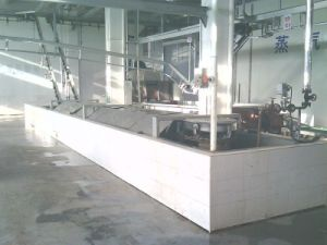 Canal Type Scalding Pool Made in China pictures & photos