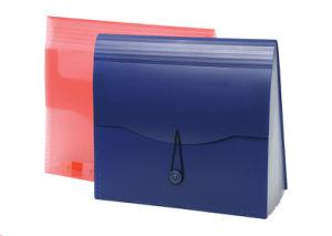 File Folder Expanding File Document Bag File Folder (FY-800T)