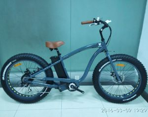 1000W Electric Bike Mountain Electric Bicycle for Sale pictures & photos