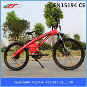 New Design Two Wheel Electric Bike Tde01 pictures & photos