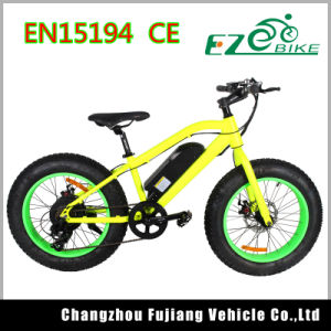 20 Inch Green Power Fat Tire Electric Bicycle pictures & photos