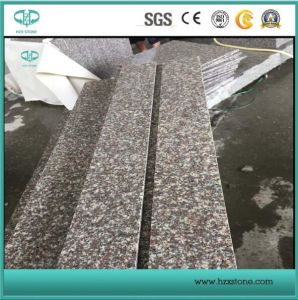 G664 Granite Tiles & Slabs China Pink Granite G664 Tile & Slabs/G664 China Luoyuan Red Granite Polished/Tombstone/European Style Monument for Sale pictures & photos