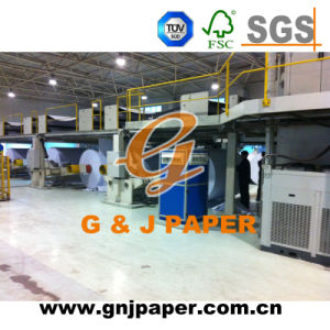 128GSM 25X37inch Size Coated Gloss Paper for Sale pictures & photos