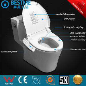 Hot Sale Bathroom Toilet Seat Smart Toilet Seat with Bidet pictures & photos