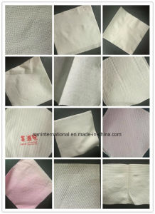 Vacuum-Suction Napkin Machine Napkin Folding Machine (SAN-NT Series) pictures & photos