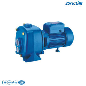 Jdp505b Self-Priming Jet Pump with CE pictures & photos