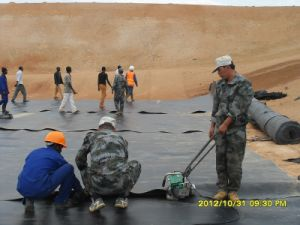 Geomembrane Waterproof HDPE Geomembrane 0.3mm-2.0mm pictures & photos
