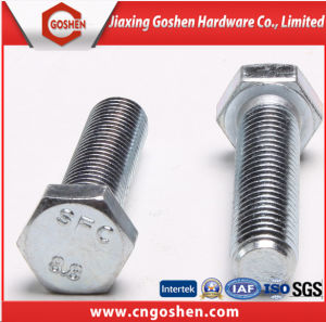 Fastener Hex Bolt, Flange Bolt, Carriage Bolt, Wheel Bolt, Wing Bolt, Eye Bolt pictures & photos
