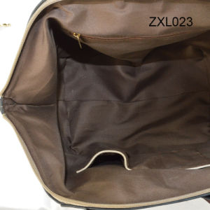 Fashinal Designer The Shoulder and Messenger Lady Hangbag pictures & photos