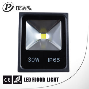 30W IP65 Outdoor LED Flood Light with CE RoHS Certificate pictures & photos