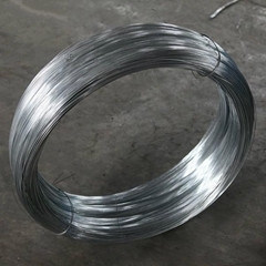 Hot Dipped Galvanized Iron Wire pictures & photos