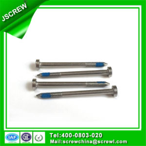 China Screw Manufacturer Cutomizied Anti-Theft Screw for Electric Product pictures & photos