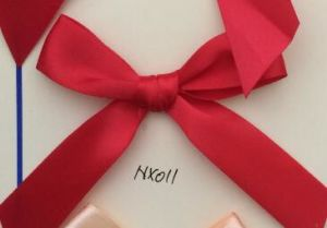 Handmade Easy Ribbon Bows for Decoration for Clothing/Garment/Shoes/Bag/Case (NX011) pictures & photos