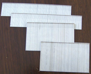 Wire Bands for Making Staples, Brads pictures & photos