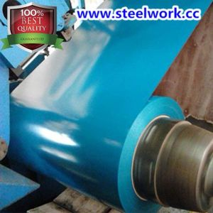High Quality PPGI/PPGL/Gi/Gl Color Coated Steel Sheet (CC-10)