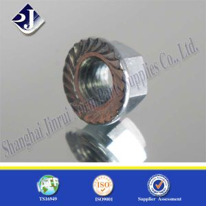 Grade 8 SGS Hex Flange Nut pictures & photos