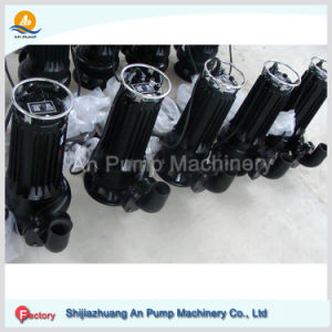 House Use Deep Well Submersible Fresh Drink Water Pump pictures & photos