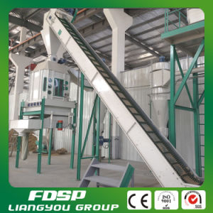 Wood Chips Complete Wood Pellet Production Line for Sale pictures & photos