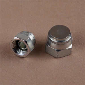 Bsp Female 60 Cone Zinc Plated Plug Hose Fitting pictures & photos