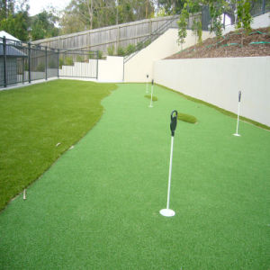 Sunwing Hot Sale Artifical Lawn for Sports pictures & photos