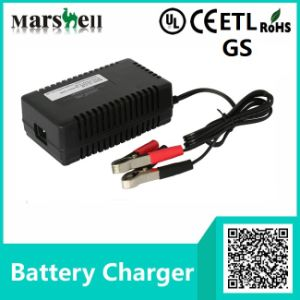 12V / 24V Electric Wheelchair Battery Charger with ETL & GS Certificate pictures & photos