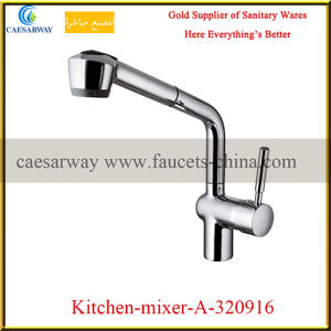 Brass Casting Pull out Sprayer Kitchen Sink Faucet pictures & photos