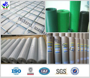 Reinforcing Construction Welded Mesh Panel (HPZS-1033) pictures & photos