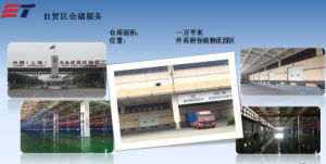 Bonded Warehouse Service on Shanghai Free Trade Zone pictures & photos