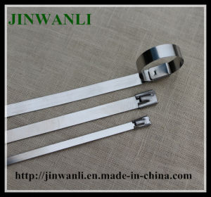 Ss304 316 Naked Stainless Steel Cable Tie pictures & photos