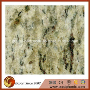 Imported Giallo Oranmental Polished Granite Shower Tile pictures & photos