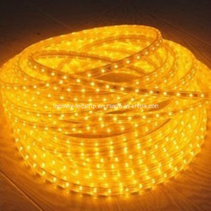 Holiday Decoration Light SMD3528 4W/M 220V LED Strip pictures & photos