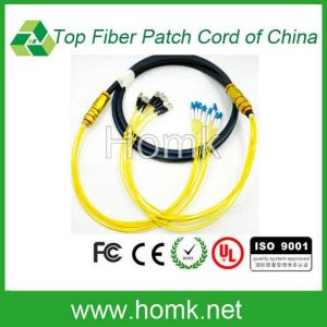 8 Core Fiber Optic Pigtail pictures & photos