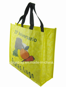 New Design PP Woven Tote Shopping Bag for Promotion