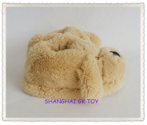 Household Indoor Plush Shoes pictures & photos