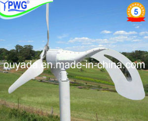 Home Use Small Wind Energy Generator pictures & photos