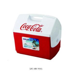 21 Litre Picnic Mini Car Cooler/Warmer Fridge Plastic Box, pictures & photos