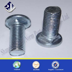 Grade 8 Main Product Carriage Bolt pictures & photos
