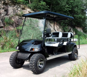 250cc Gas Power Golf Cart with 4 Seats pictures & photos