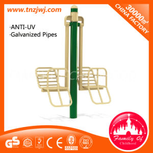 Safety Teenagers Outdoor Fitness Equipment Fitness Equipment for Sale pictures & photos