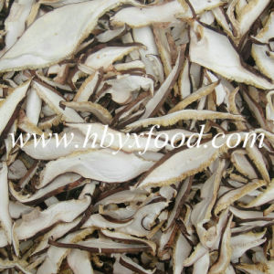 Dried Shiitake Mushroom Granule Spawn pictures & photos