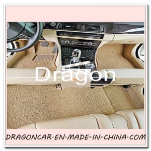 High Quality and Colorful PVC Coil Mat Auto Parts Car Floor Mat pictures & photos