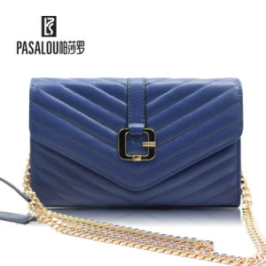 Newest Design for Spring Collections of Bags for Women. pictures & photos