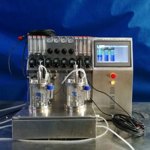 0.5L Glass Cells Bioreactor pictures & photos