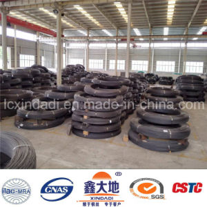 6.0 Hot Sale High Tension Spiral PC Steel Wire pictures & photos