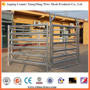 Cow Panels for Sale Galvanized Livestock Panels Cattle Gates and Panels pictures & photos