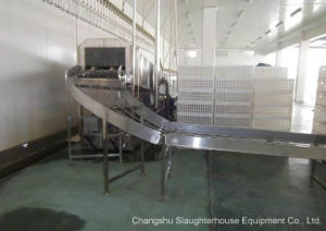 Crate Washer/ Chicken Cage Washing Machine pictures & photos