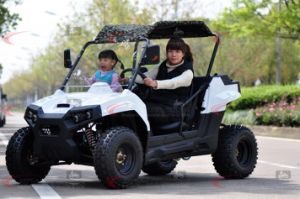 Hot Selling 200cc China Utility Vehicle UTV with 2 Seaters Ut2001 pictures & photos