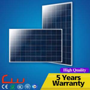 China Production Line 250W Wholesale Poly Solar Panel pictures & photos