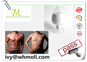 Raw Steroid L-Thyroxine T4 CAS No. 51-48-9 for Weight Loss pictures & photos